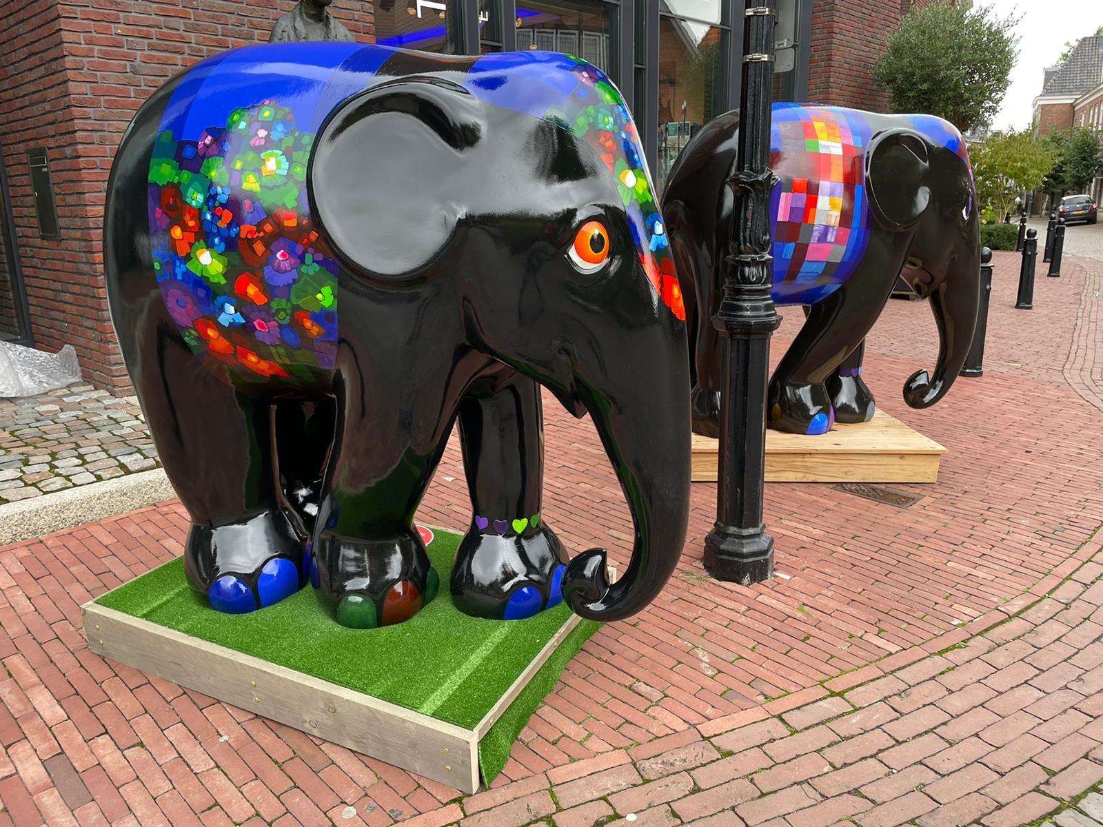 Elephant Parade wederom in Ootmarsum!